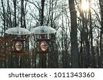 bird feeders in my backyard in... | Shutterstock . vector #1011343360