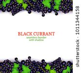 black currant fruit horizontal... | Shutterstock .eps vector #1011344158