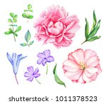 watercolor hand drawn floral... | Shutterstock . vector #1011378523