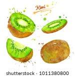 watercolor set of whole  half... | Shutterstock . vector #1011380800