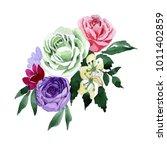 bouquet flower in a watercolor... | Shutterstock . vector #1011402859