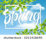 spring lettering and tree...   Shutterstock .eps vector #1011418690