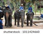 lampang province thailand   dec ... | Shutterstock . vector #1011424660