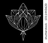lotus vector illustration.... | Shutterstock .eps vector #1011443620