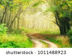winding dirt road through... | Shutterstock . vector #1011488923