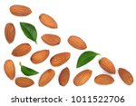 almonds with leaves isolated on ... | Shutterstock . vector #1011522706