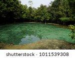 emerald pool krabi thailand.... | Shutterstock . vector #1011539308