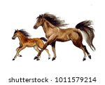 Stock photo watercolor cute horse on the white background 1011579214