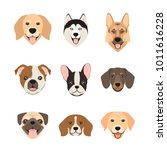 Stock vector flat style dog head icons cartoon dogs faces set vector illustration isolated on white 1011616228