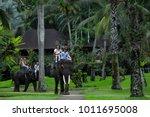 bali  indonesia   november 17 ...   Shutterstock . vector #1011695008