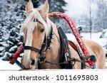Horse Drawn Sleigh. Winter In...
