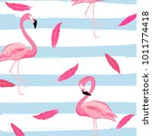 flamingo and pink feathers with ... | Shutterstock .eps vector #1011774418
