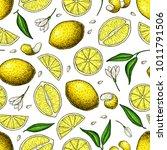 lemon vector seamless pattern... | Shutterstock .eps vector #1011791506