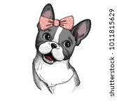 cute french bulldog with bow.... | Shutterstock .eps vector #1011815629