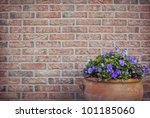 Flower Pot In Front Of A Brick...