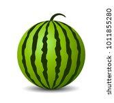 round watermelon vector icon... | Shutterstock .eps vector #1011855280