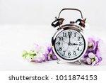 spring time change  spring... | Shutterstock . vector #1011874153