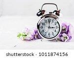spring time change  spring... | Shutterstock . vector #1011874156