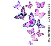 beautiful pink butterfly... | Shutterstock . vector #1011881398