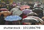 heavy rain  people holding... | Shutterstock . vector #1011886798