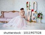 classical beauty. beautiful... | Shutterstock . vector #1011907528
