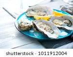 fresh oysters close up on blue...   Shutterstock . vector #1011912004