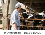breeder in front of his cows | Shutterstock . vector #1011916420
