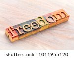 freedom word abstract in ... | Shutterstock . vector #1011955120