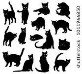 pretty cat illustration  i made ...   Shutterstock .eps vector #1011966850