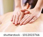 close up of hands of a masseur... | Shutterstock . vector #1012023766