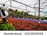 cameron highland  malaysia  ... | Shutterstock . vector #1012024543