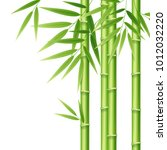realistic 3d detailed bamboo... | Shutterstock .eps vector #1012032220