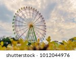 suzuki japanese pampas grass... | Shutterstock . vector #1012044976