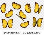 butterfly vector. yellow... | Shutterstock .eps vector #1012053298