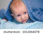 little newborn baby. cute... | Shutterstock . vector #1012066078