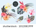 tropical flowers  palm leaves ... | Shutterstock .eps vector #1012081999