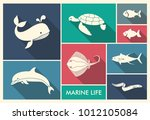 marine life. whale  dolphin... | Shutterstock .eps vector #1012105084