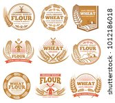 organic wheat flour  farming...   Shutterstock .eps vector #1012186018
