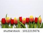 multicolored beautiful spring... | Shutterstock . vector #1012215076