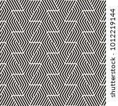vector seamless stripes pattern.... | Shutterstock .eps vector #1012219144