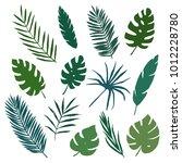 tropical leaves set. vector... | Shutterstock .eps vector #1012228780