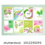 set of natural product brochure ... | Shutterstock .eps vector #1012250293
