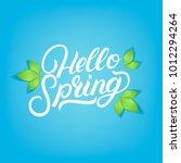 hello spring hand written... | Shutterstock .eps vector #1012294264