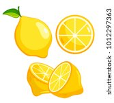 lemon with branch and slice.... | Shutterstock .eps vector #1012297363