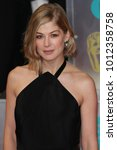 Small photo of LONDON - FEB 8, 2015: Rosamund Pike attends the EE British Academy Film Awards at The Royal Opera House in London