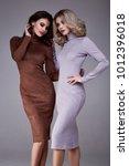 two sexy beauty woman pretty... | Shutterstock . vector #1012396018