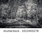 a secluded road through... | Shutterstock . vector #1012403278