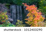 colorful autumn foliage and... | Shutterstock . vector #1012403290