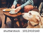 young man with labrador... | Shutterstock . vector #1012410160