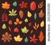 autumn leaf vector autumnal...   Shutterstock .eps vector #1012503100